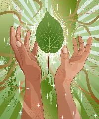 200_200_Healing_Hands_uplifted